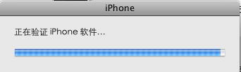 正在验证iPhone软件